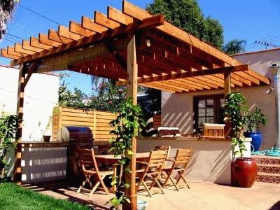 Садовые перголы виноград